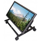"28"" Confidence Monitor with Cart"